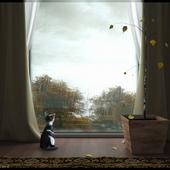 Кошачья осень