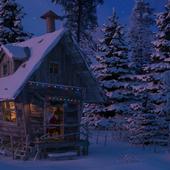 Жарко в лесу зимой...