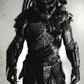 Mr. Black Predator