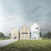 3D Architectural Visualization Cottages. USA