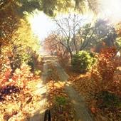 Осенний кадр