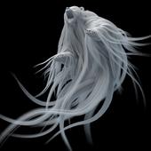 IXOR VFX | BEAR | HAIR CREATION & GROOMING