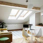 Проект реконструкции не используемой свободной площади под крышей