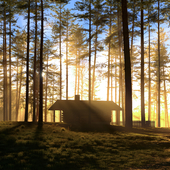 Cabin in the woods. Sunrise