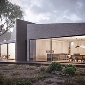 Concept House 1