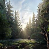 Утренний лес.(сделано по уроку)