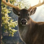 Photorealistic CG Deer