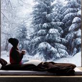 Девушка с кофе в уютном интерьере на фоне красивого зимнего леса. (сделано по референсу)
