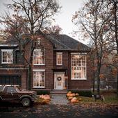 Autumnal Illinois