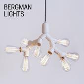 Bergman Lights