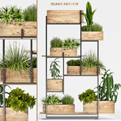 Plant set-118
