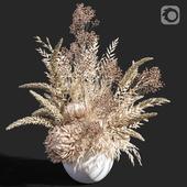 Flower 04 Dry Flowers