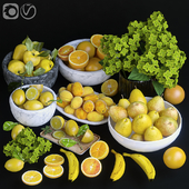 Fruits. Orange/yellow
