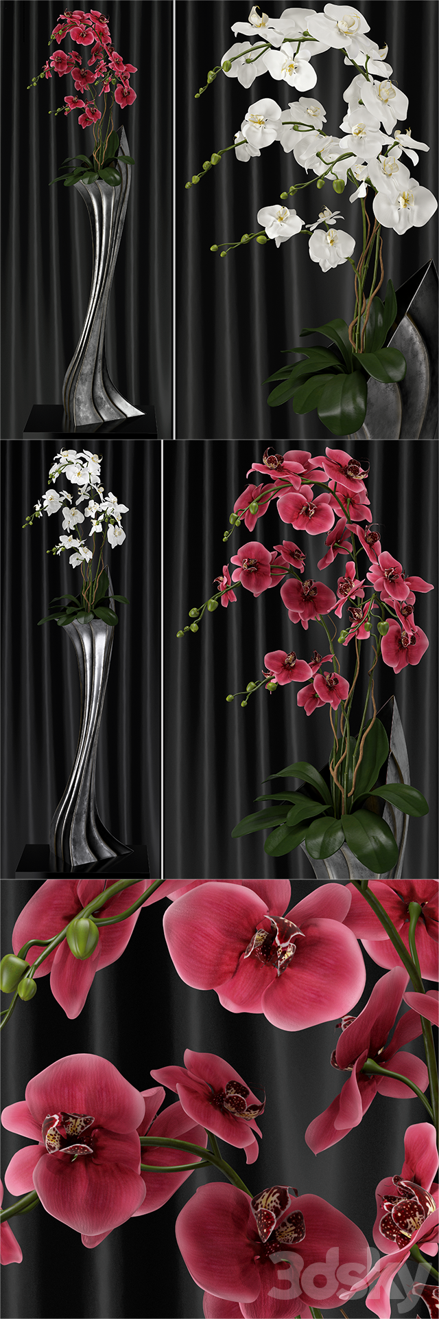 Orchid (phalaenopsis) bouquet 2