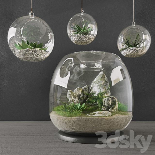 Florarium Decorative Set (Interior)