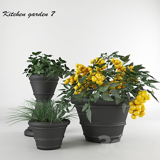 Ornamental garden # 7