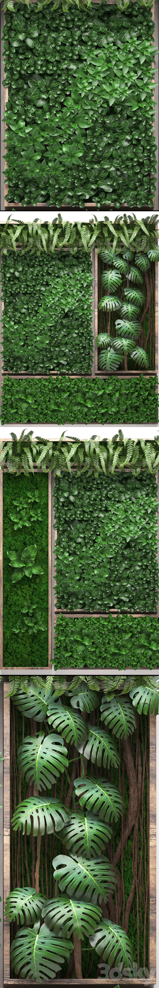 Vertical garden 22. Five separate modules