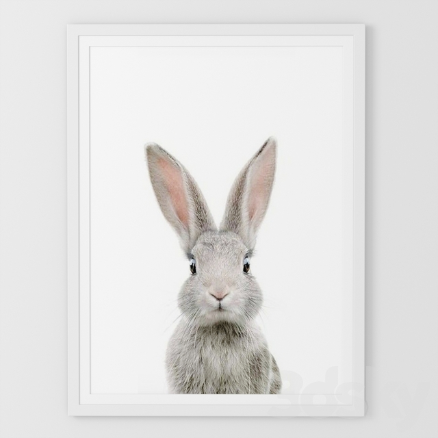 Picture bunny.