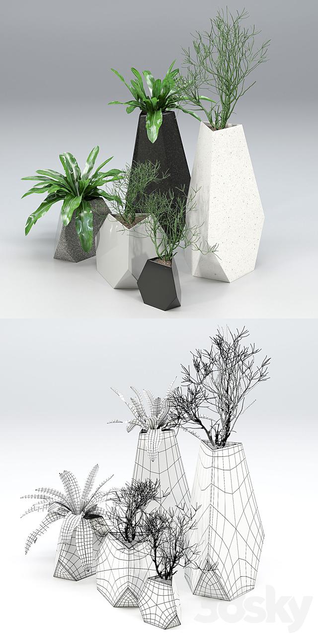 Treesquare Rockbound 01