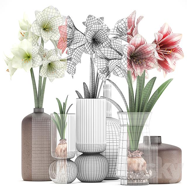 Bouquet of flowers 89. Hippeastrum.