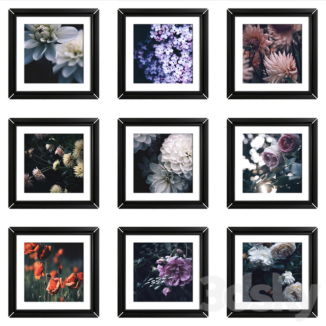 Flower posters