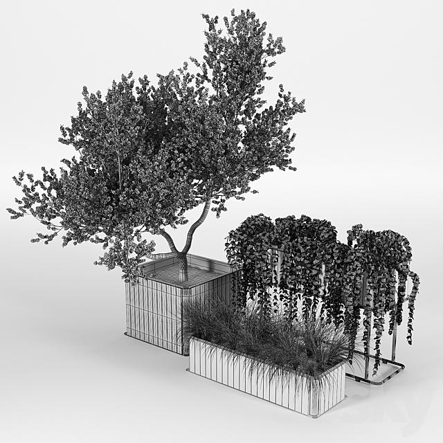Flowerbox Combine Planters