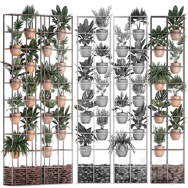 Vertical gardening. thirty