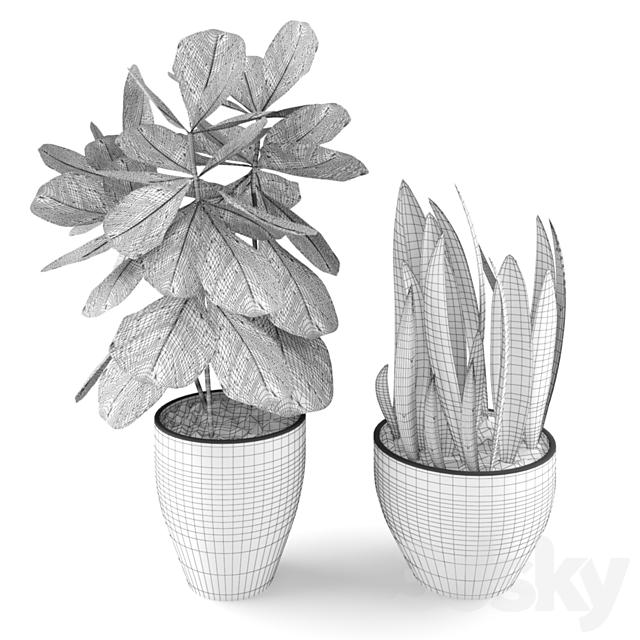 Plants set 01