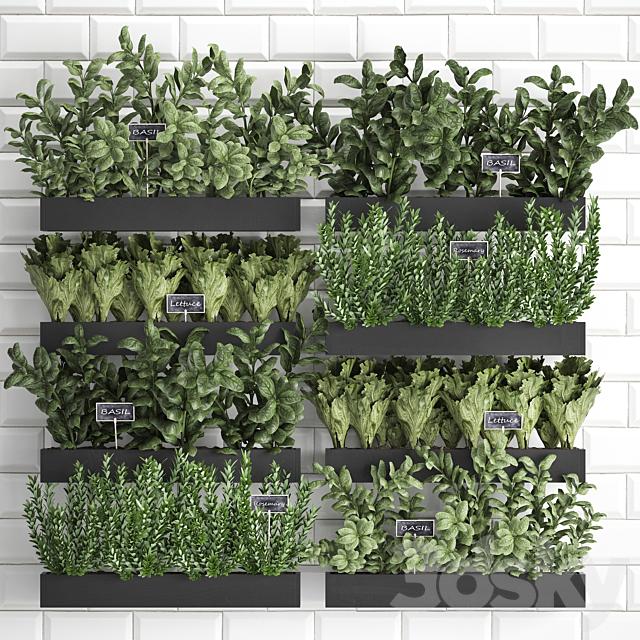 Vertical gardening. 38