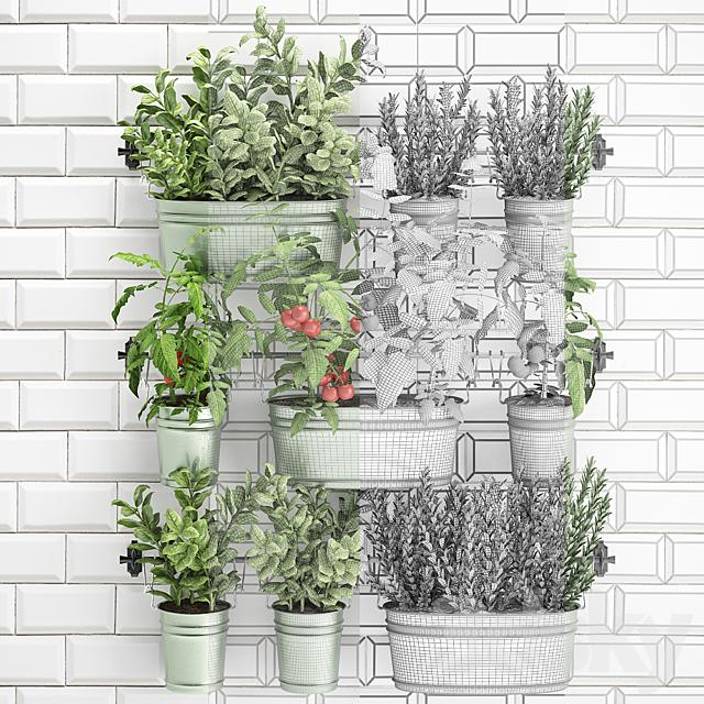 Vertical gardening. 39