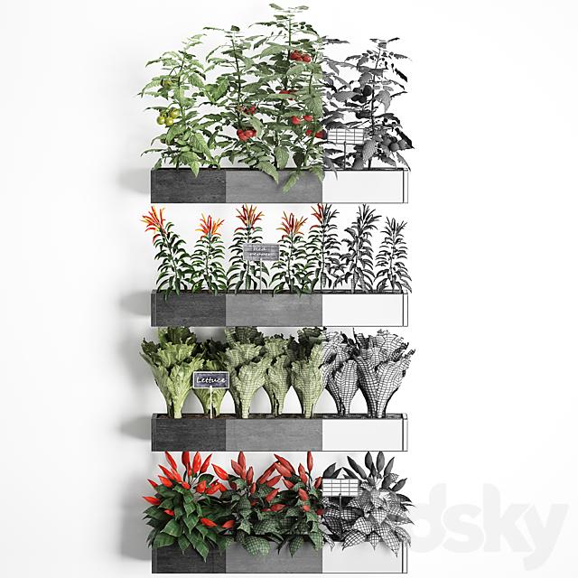 Vertical gardening. 47
