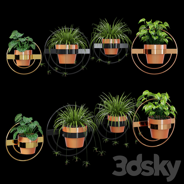 Wall planters round