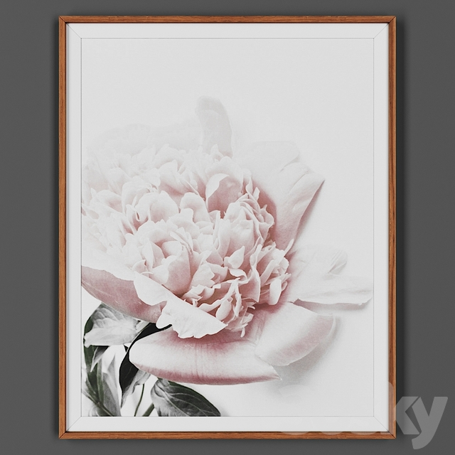 Picture frame 00026-13