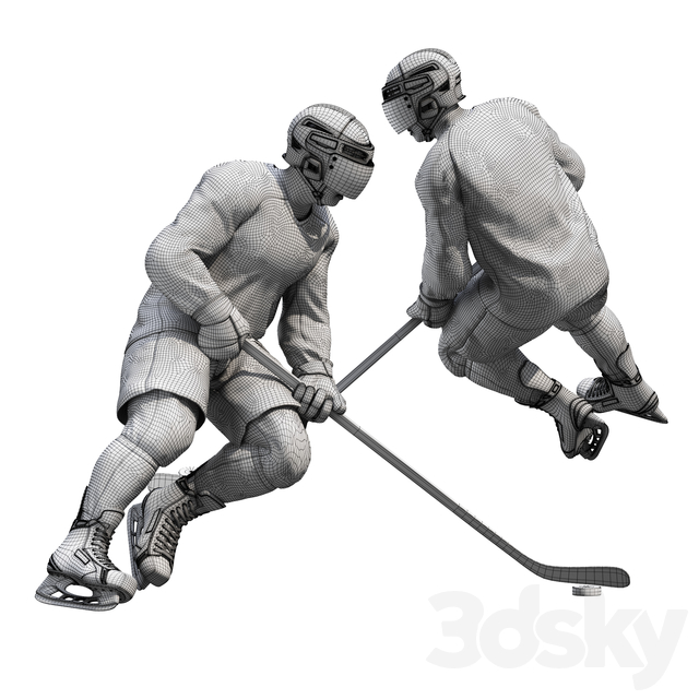 Hockey player. Position 1