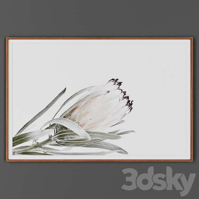 Picture frame 00026-26