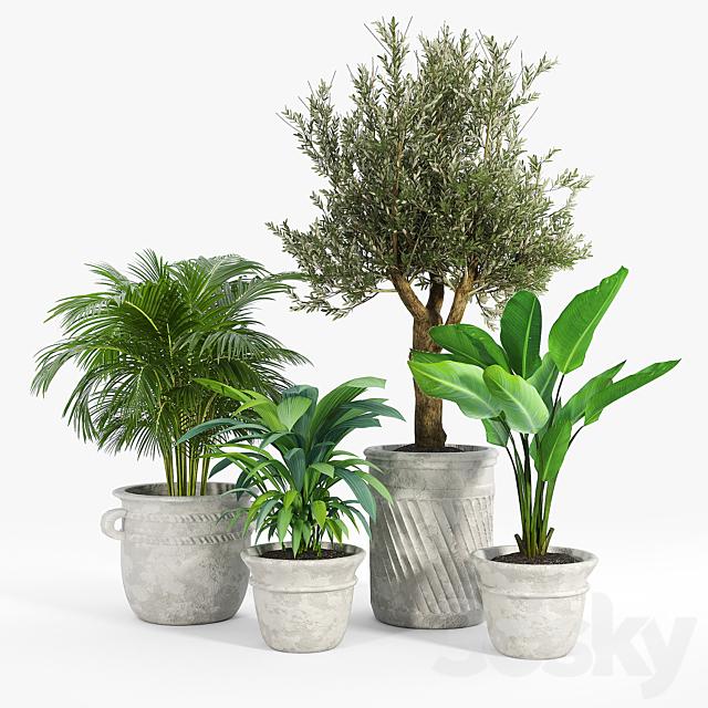 Eclectic Villa Planters 2