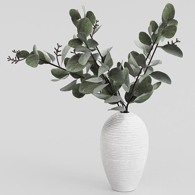 Bouquet of eucalyptus.