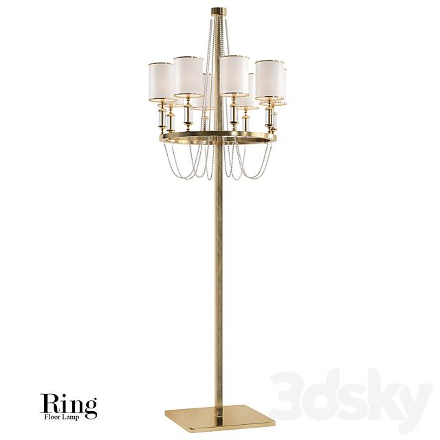 Ring floor lamp