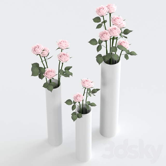 Roses in vases.
