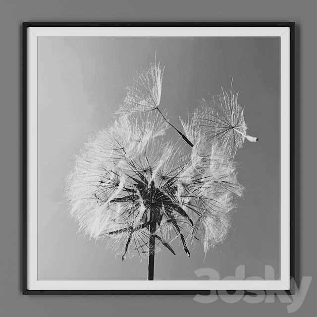 Picture frame 00032-58