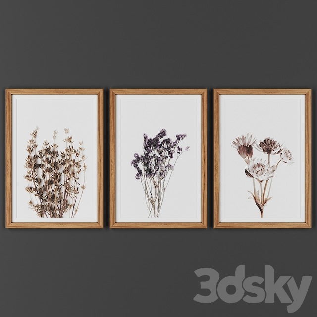 Picture frame set 00022-24