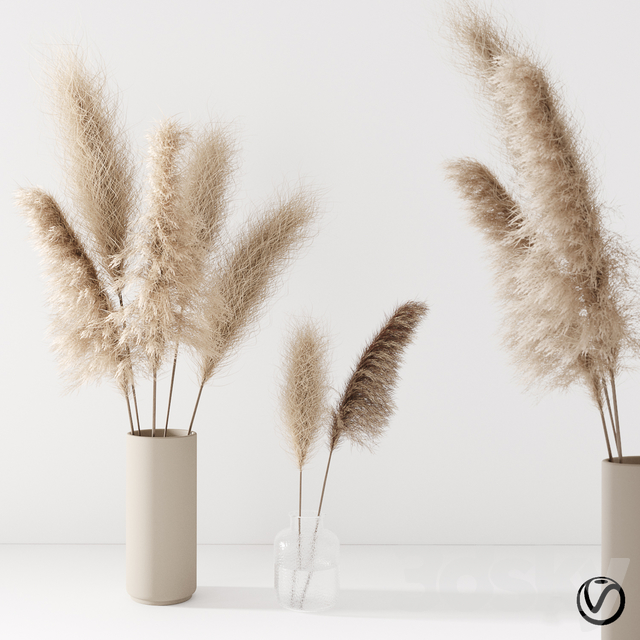 Set of pampas in vase