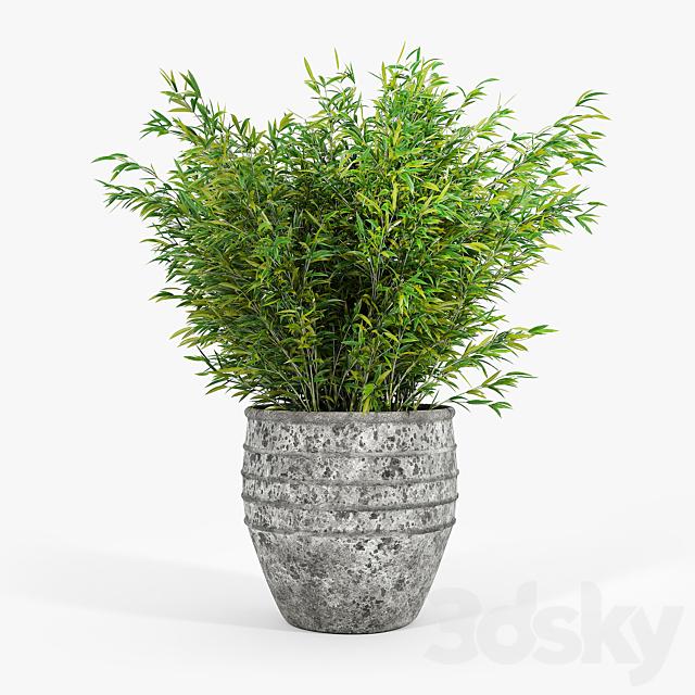 Knisely 2-Piece Pot Planter Set 02