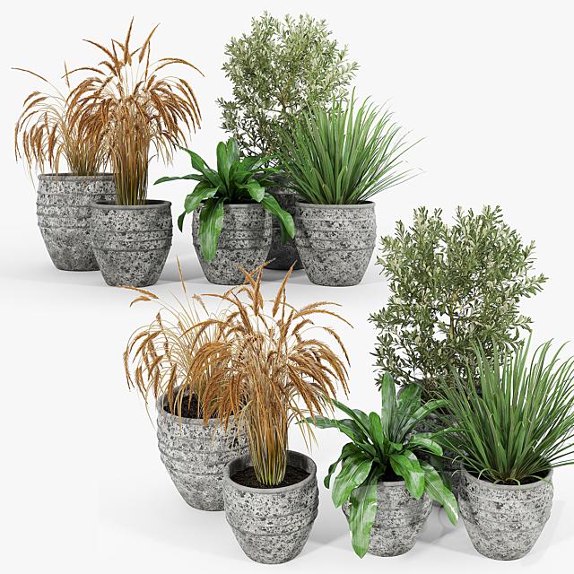 Knisely 2-Piece Pot Planter Set 03
