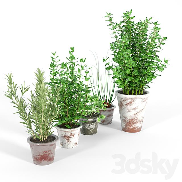 Bondurant Large Heavily Distressed Clay Pot Planter 02