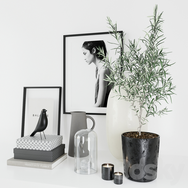 Set with olive tree