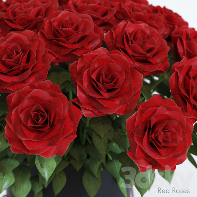Bouquet of red roses in a hat box