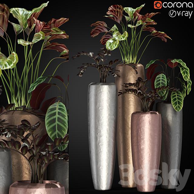 Plants collection 272 Fleur ami LOFT