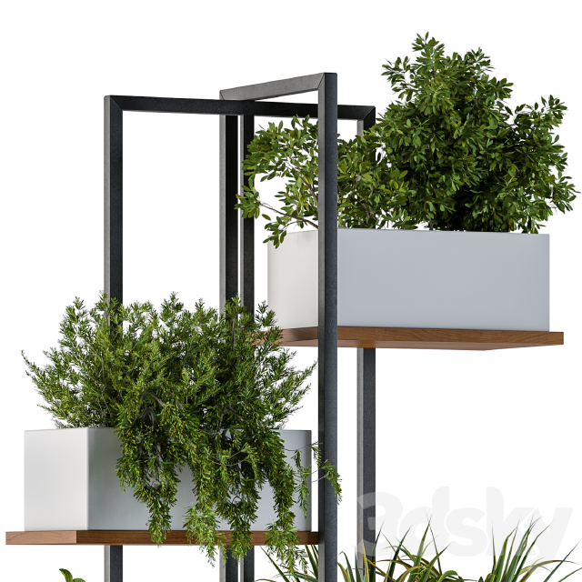 White Box Plants on stand