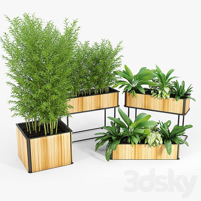 Flowerbox Combine Planters 2